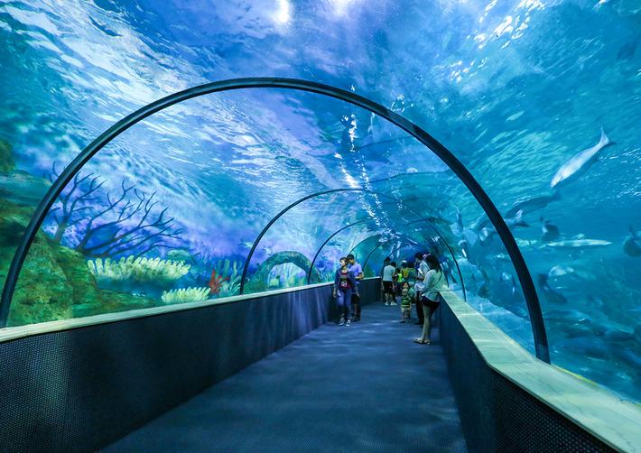 Thích thú khi đến viện hải dương học Nha Trang